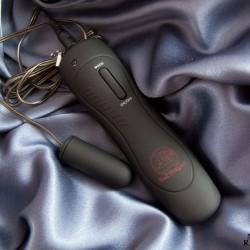 Rating the Bad Dragon Bullet Vibrator
